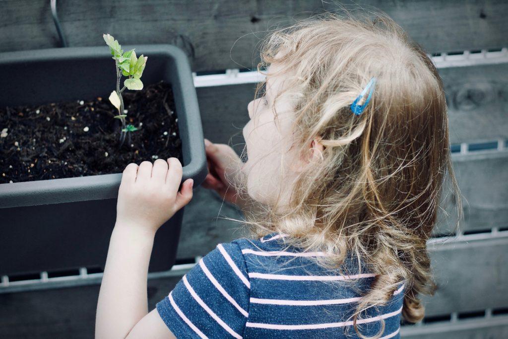 Enfant qui regarde une plante -lheureduchoix - blog citoyen
